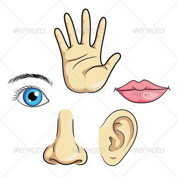 Eye Ear Nose Lips & Hand - Miscellaneous Characters