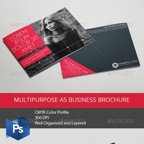 Multipurpose A5 Business Brochure Vol.1