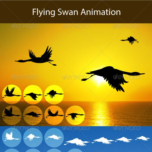Flying Swan Animation