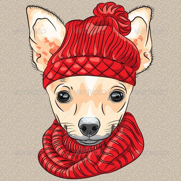 Cartoon Hipster dog Chihuahua breed Smiling