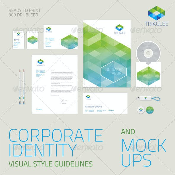 Corporate Identity Guidelines and Mock-ups
