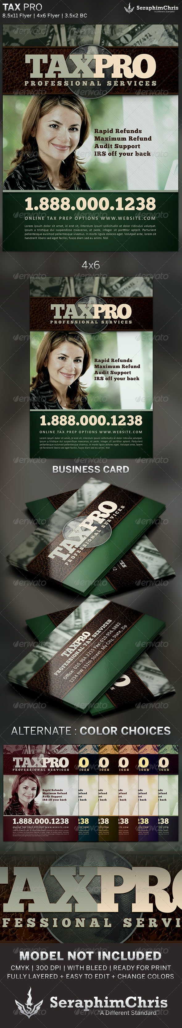 Tax Pro Flyer and Business Card Template - Corporate Flyers