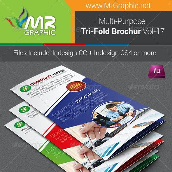 Multipurpose Business Tri-Fold Brochure Vol-17