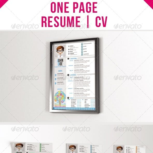 One Page Resume - CV