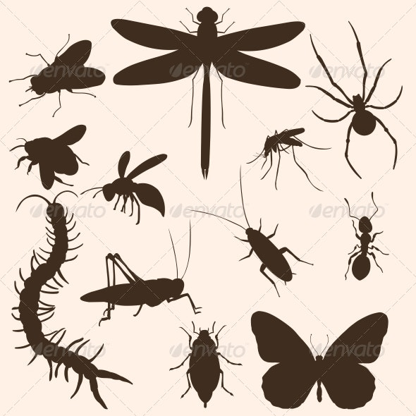 Set of Insects Silhouettes - Animals Characters