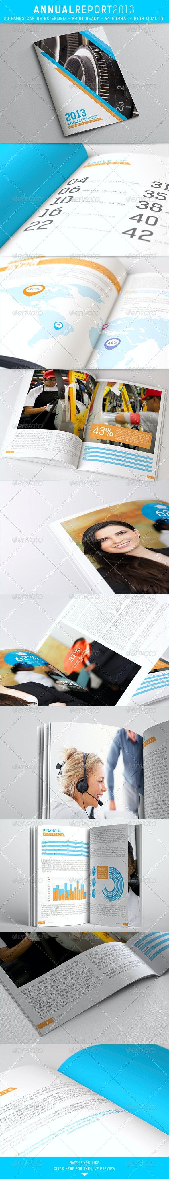 Annual Report 2013 - Brochures Print Templates