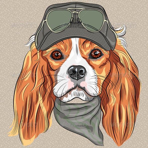 Hipster Dog Cavalier King Charles Spaniel