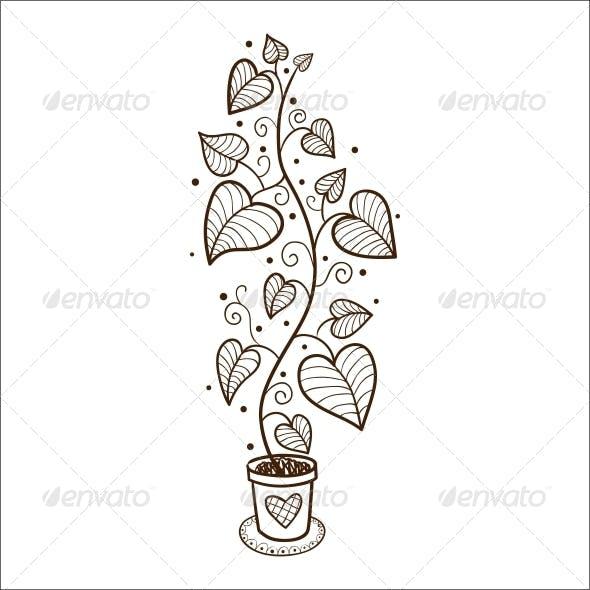 Flower in a Pot.