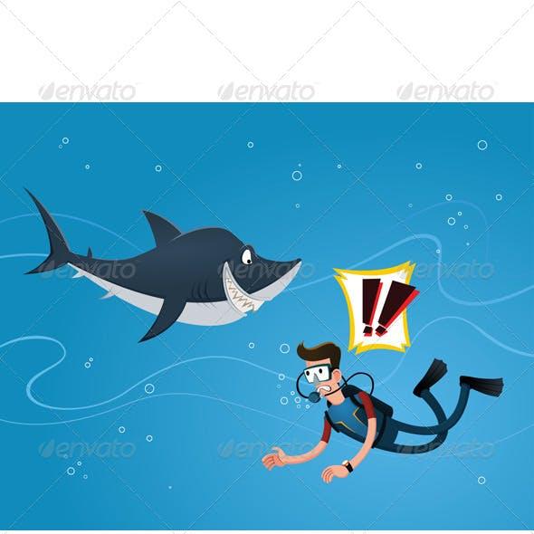 Meet a Shark