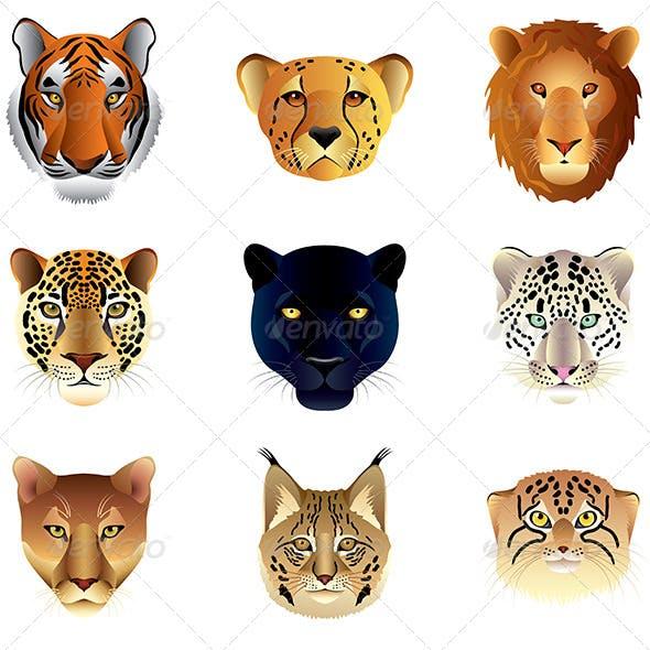 Big Cat Heads Set