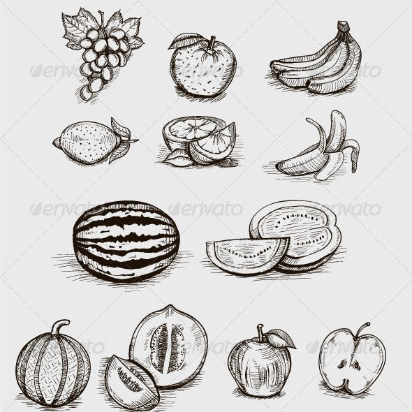 Sketched-Style Fruit Illustrations