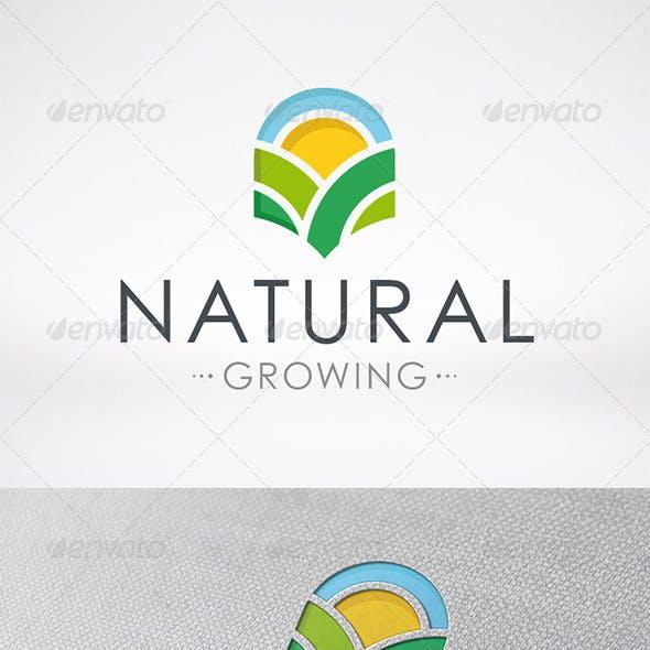 Natural Growing Logo Template