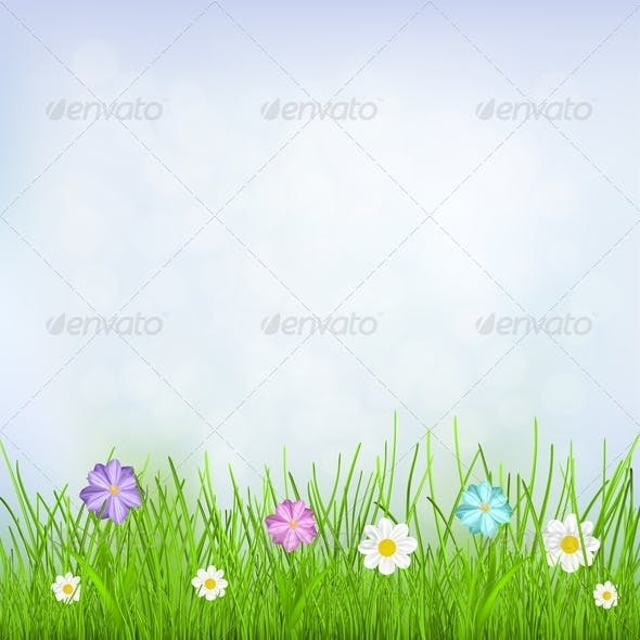 Background with Sky, Grass and Flowers