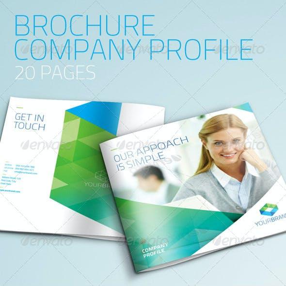 Brochure - Company Profile/Multi Purpose