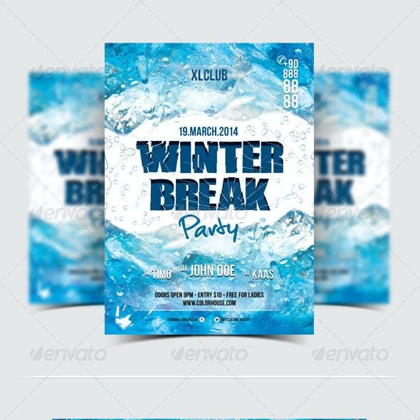 Winter Break Party Flyer / Poster - 10