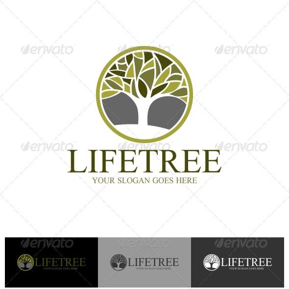 Life Tree Logo Template