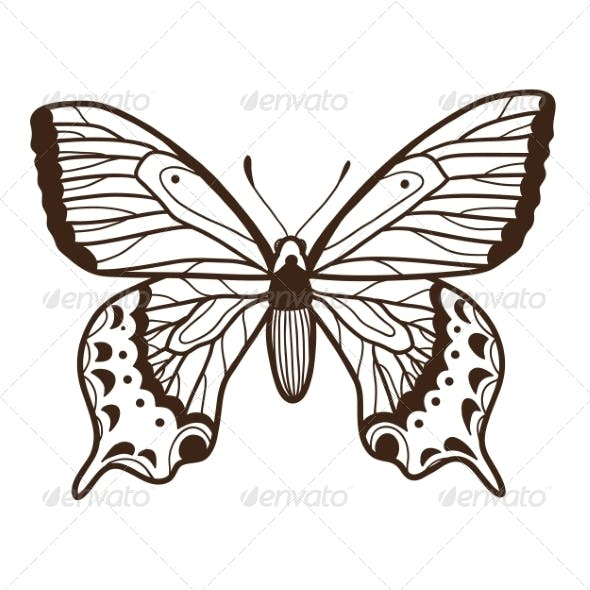 Abstract Graphic Butterfly