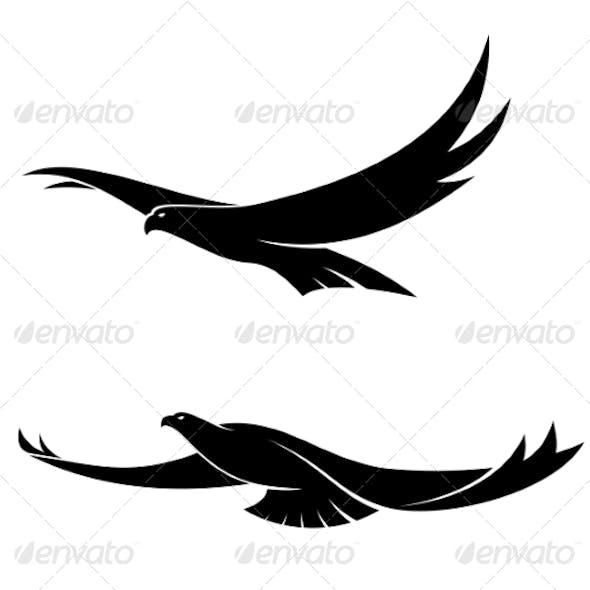 Two Graceful Flying Birds