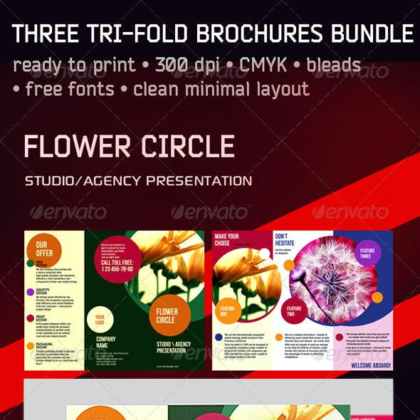 3 Trifold Brochure Set: Circle Square Numbers