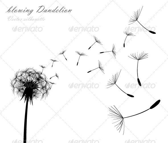Blowing Dandelion - Flowers & Plants Nature