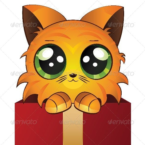 Red Kitten in a Box