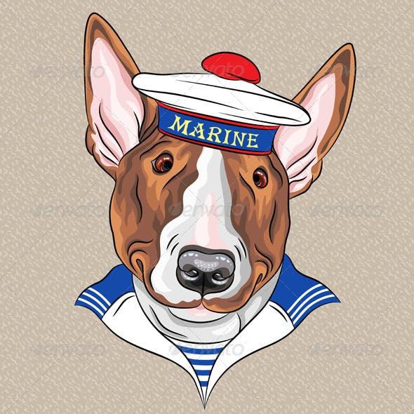 Cartoon Hipster Bullterrier Dog Sailor