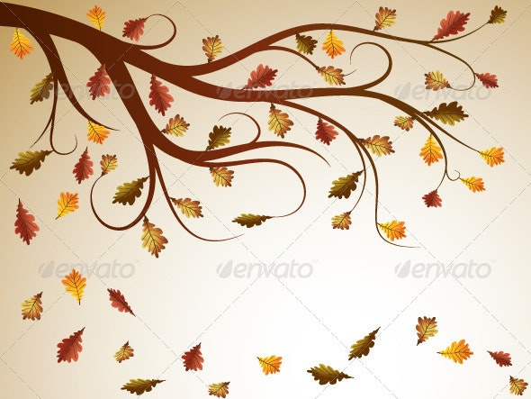 Oak Tree - Seasons Nature