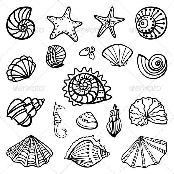 Set of Seashells on White Background - Animals Characters
