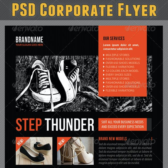 Corporate Product Flyer 79