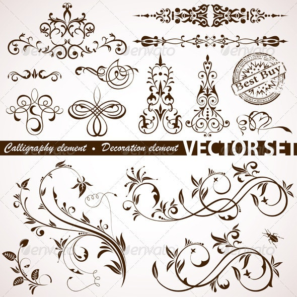 Calligraphic and Floral Element - Decorative Symbols Decorative