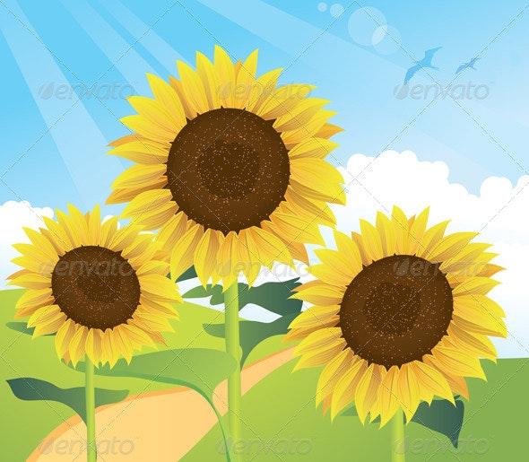 Summer Sunflower Landscape - Flowers & Plants Nature