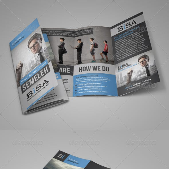 Standard Business Brochure