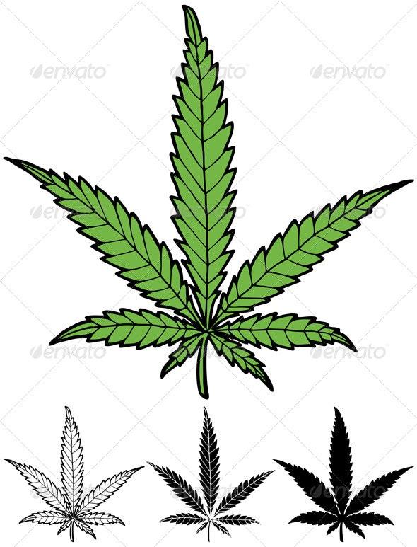 Hemp Leaf - Flowers & Plants Nature