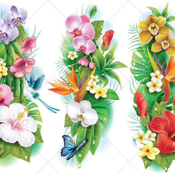 Arrangement of Tropical Flowers and Leaves