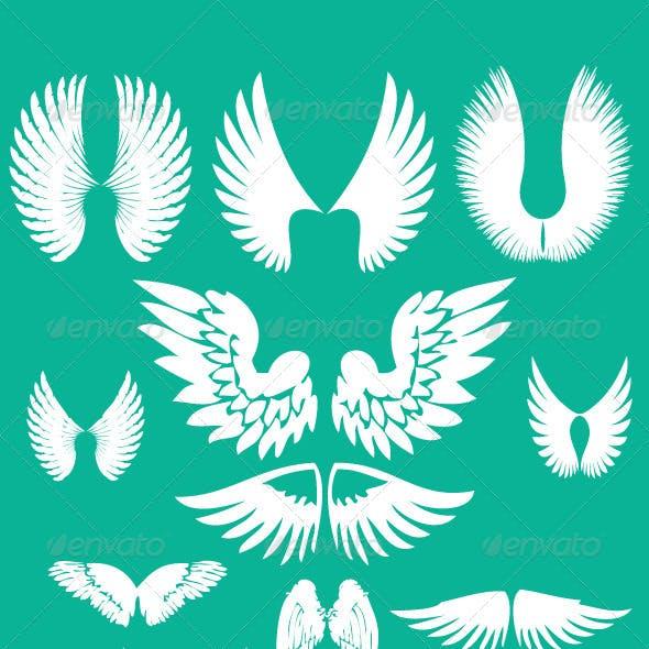 Wings Digital Clipart