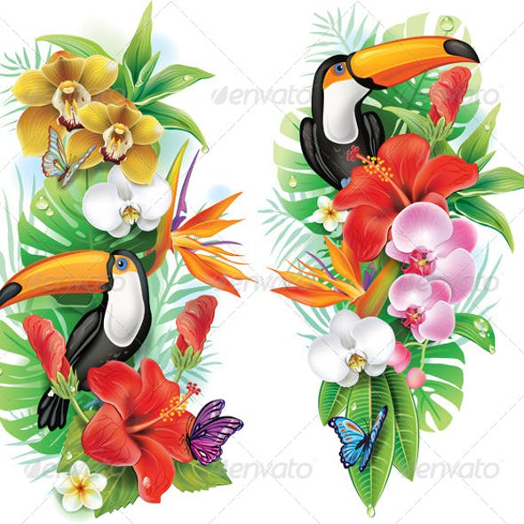 Tropical Flowers, Toucan and Butterflies