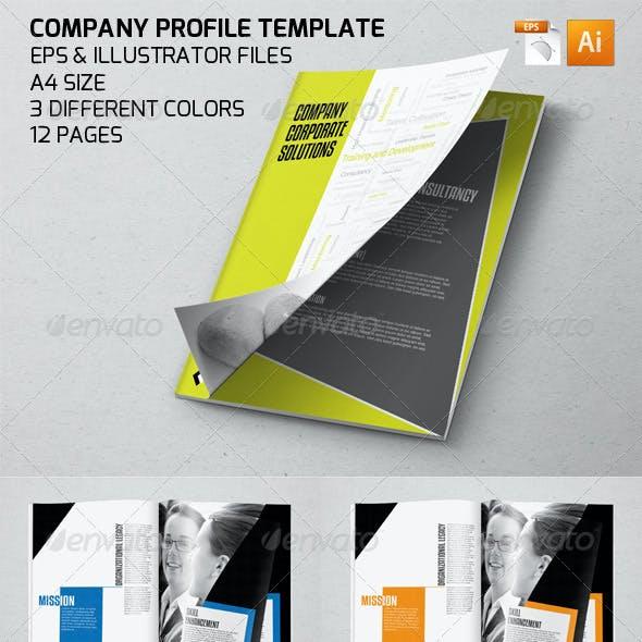 Professional Company Profile Template