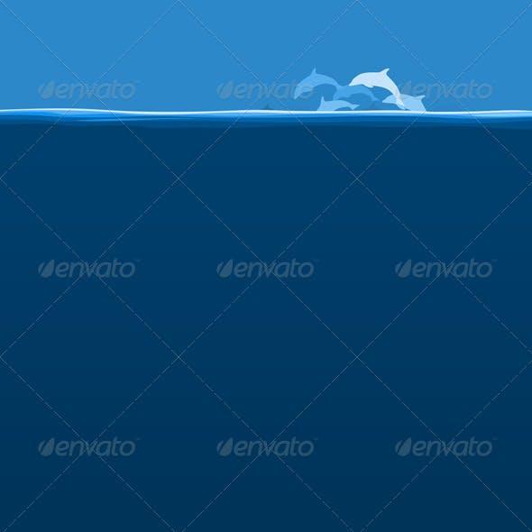 Flight of dolphins