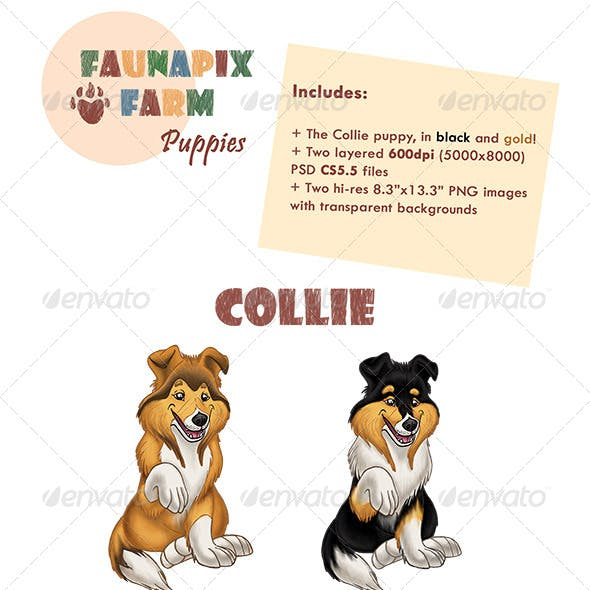 Collie Pups Illustrations