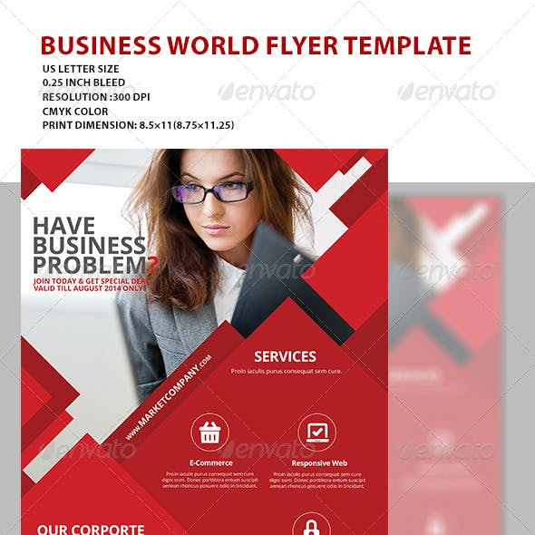 Business Flyer Template 2014