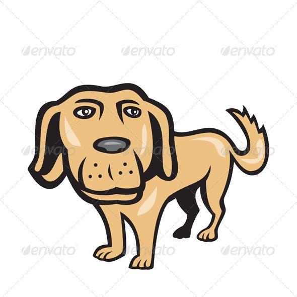 Retriever Dog Big Head Isolated Cartoon
