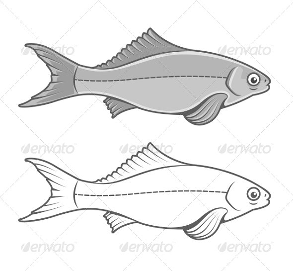 Silhouette of Fish Contour Drawing - Animals Characters