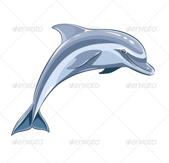 Dolphin - Animals Characters