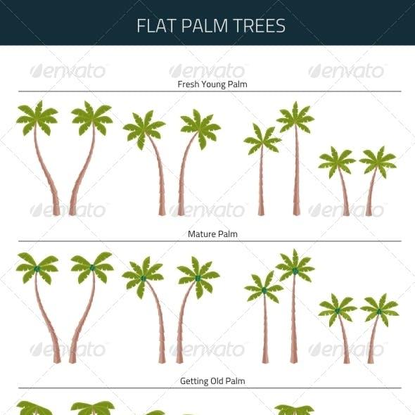 Flat Palm Trees
