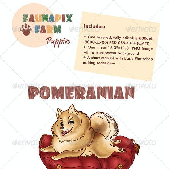 Pomeranian Pup Illustration