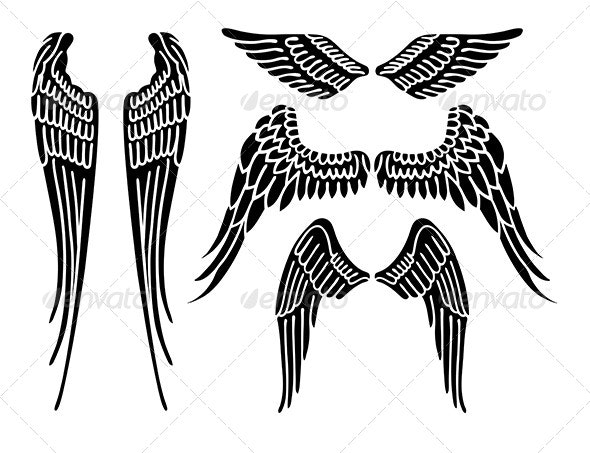 Angel Wings - Nature Conceptual