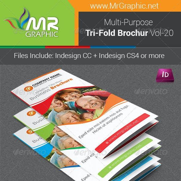 Multipurpose Business Tri-Fold Brochure Vol-20