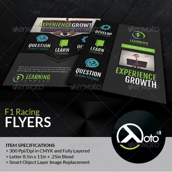 Learning Curve Online Course Flyers