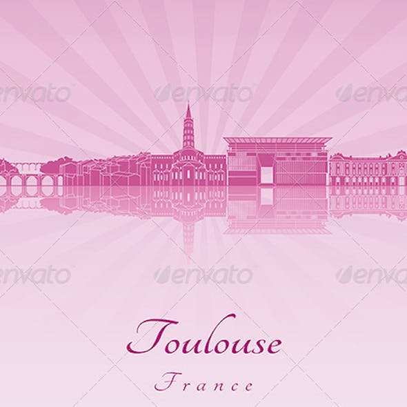 Toulouse Skyline
