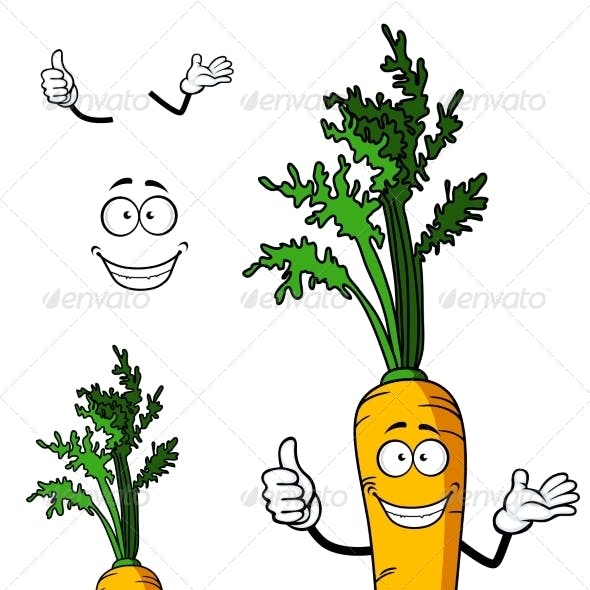 Fresh Whole Carrot Vegetable